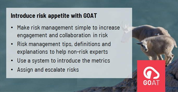 Software to support risk appetite